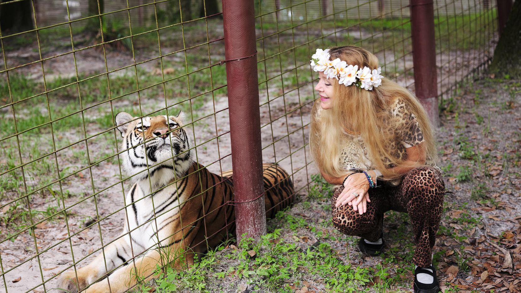 Carole Baskin junto a un tigre en su santuario de animales exóticos Big Cat Rescue en Tampa, Florida.