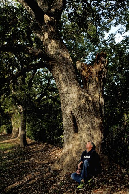 Mike Brown, pictured with his champion chinkapin oak on November 7, 2013 in McKinney.