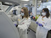 In this May 2020 photo provided by Eli Lilly, researchers prepare cells to produce possible COVID-19 antibodies for testing in a laboratory in Indianapolis. Antibodies are proteins the body makes when an infection occurs; they attach to a virus and help it be eliminated. (David Morrison/Eli Lilly via AP)