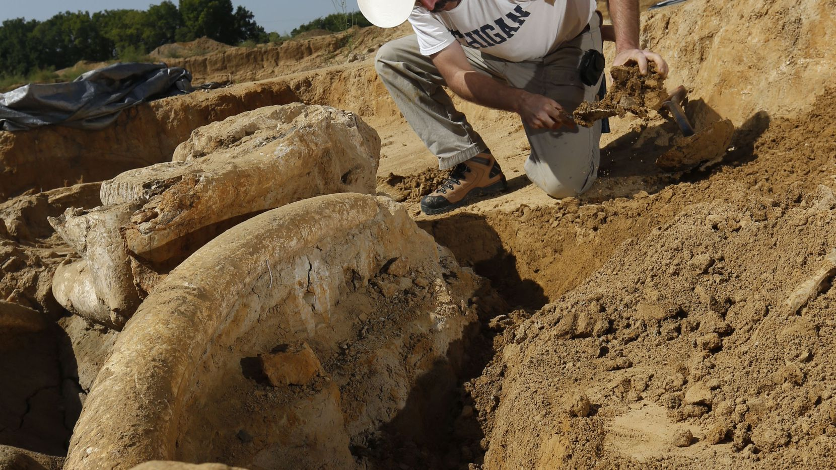 Ron S. Tykoski, a fossil preparator for the Perot Museum of Nature and Science, excavates a preserved mammoth skeleton from an Ellis County gravel pit. The pit's owner, Wayne McEwen, is donating the skeleton to the museum.