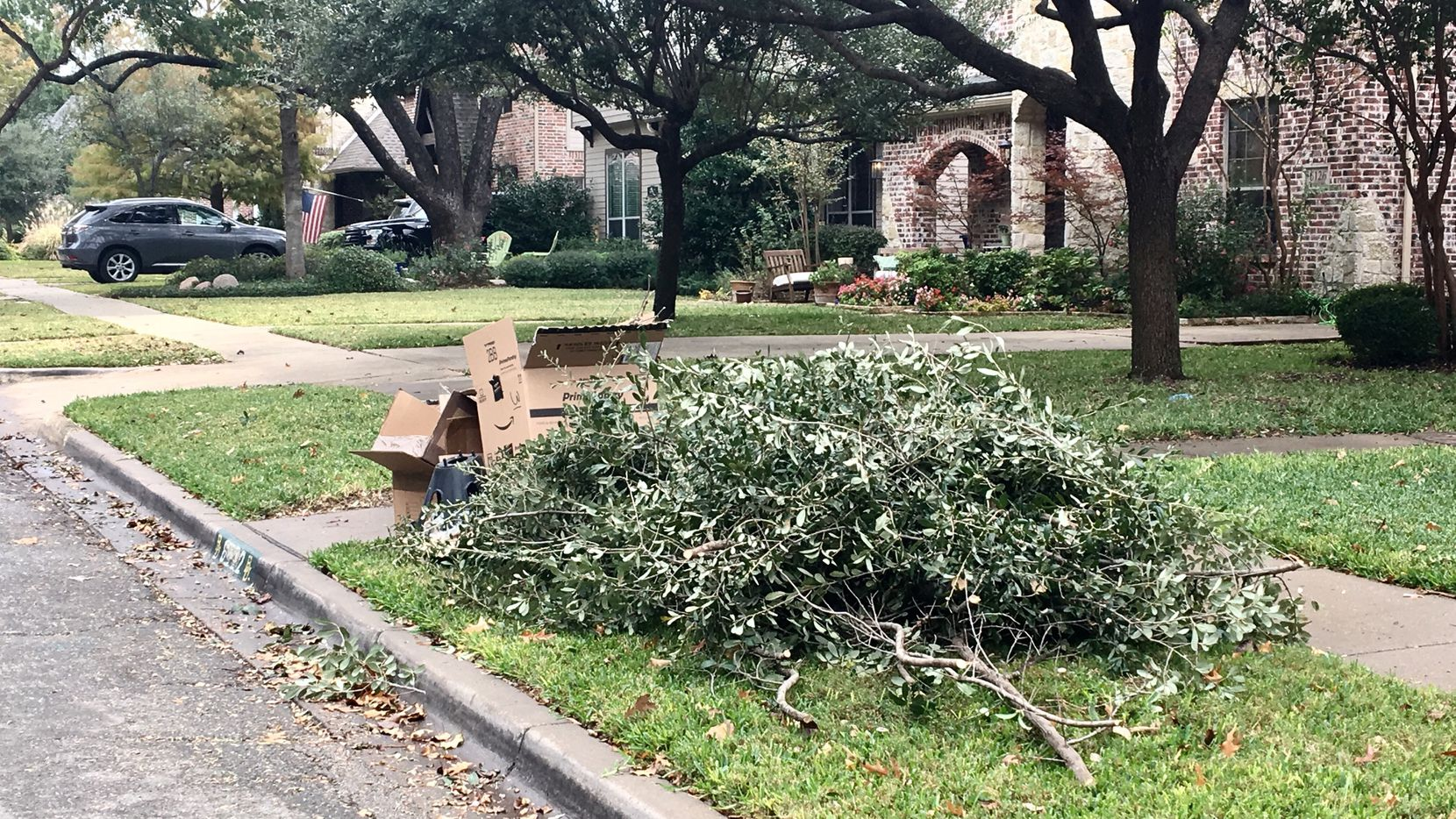 Brush and bulk trash ready for pickup on Palo Pinto Avenue in East Dallas.