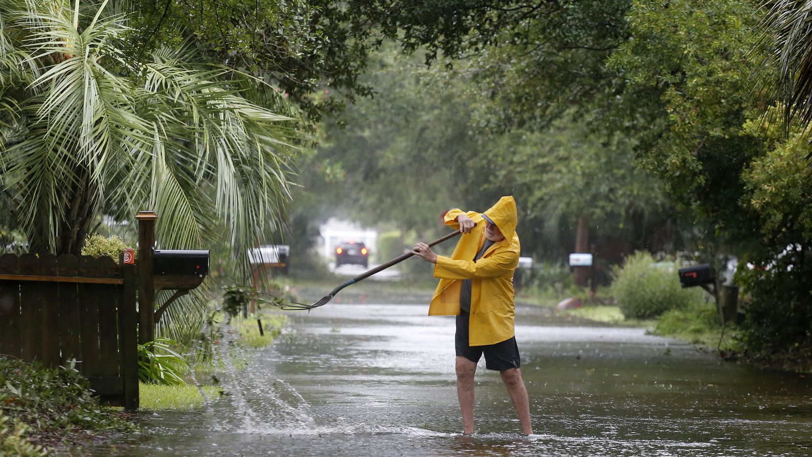 Una persona trata de limpiar la calle saturada de ramas de palmas que fueron derribadas por los vientos en la sección de Isle of Palms en Charleston, Carolina, del Sur.