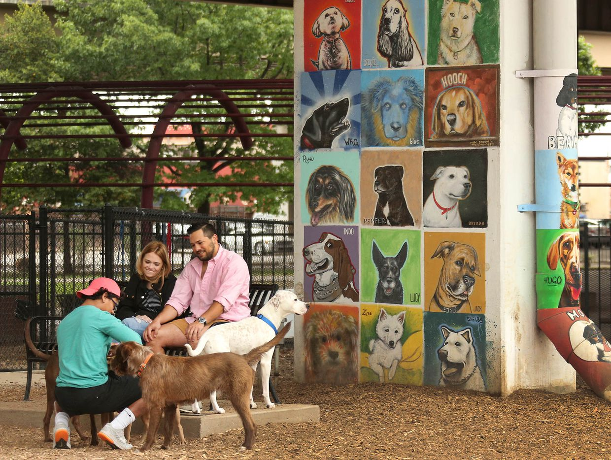 Friends are made easily, both human and canine at the Bark Park in Deep Ellum, photographed on Saturday, April 1, 2017.