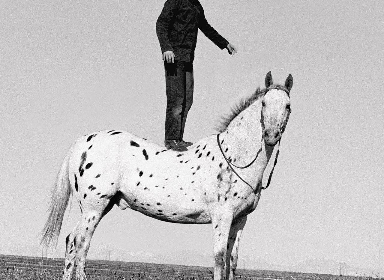 Hutterite Boy on Appaloosa, Golden Valley Colony, Ryegate, Montana, June 15, 1993  by Laura Wilson