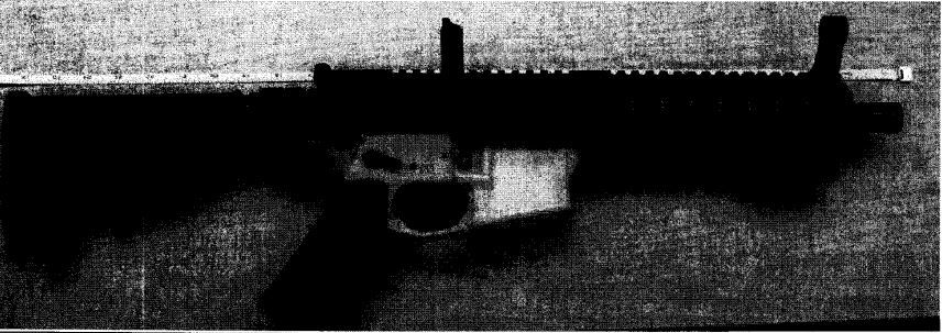 A photo from court documents showing the AR-15 style rifle that Eric McGinnis had in his possession when he was arrested in July 2017.
