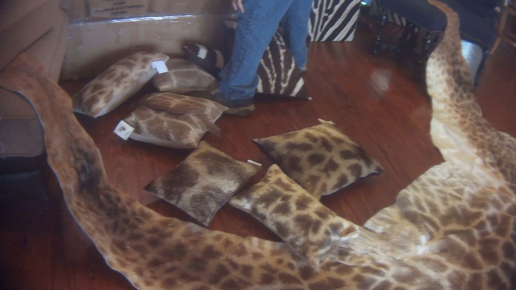 Giraffe hide pillows were seen for sale at The African Market's Trophy Room Collection in Myakka, Fla., in March.