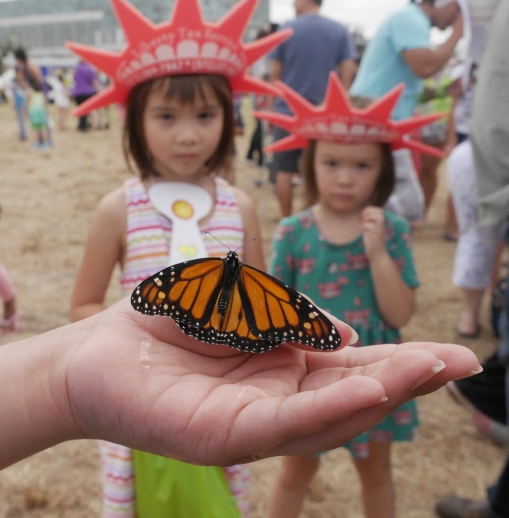Children watch a monarch butterfly at the Flight of the Monarch Celebration at Central Park in Grand Prairie.