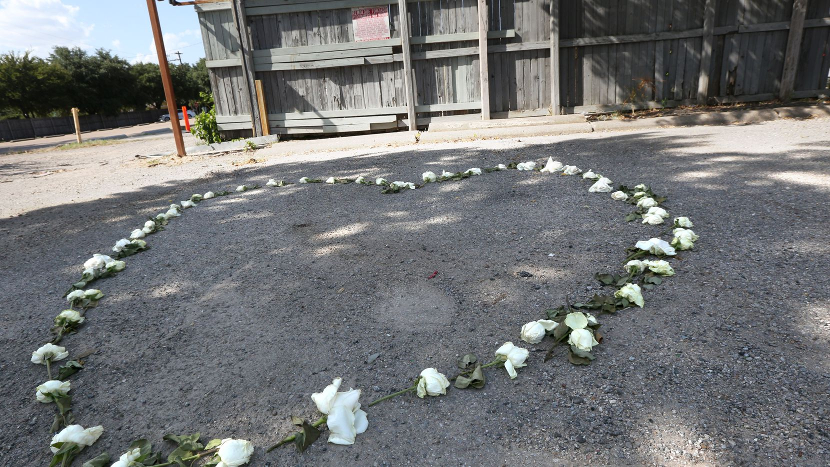 A memorial for Sara Hudson made from roses in the shape of a heart was constructed in a parking lot a few blocks west of Greenville Avenue in Dallas.
