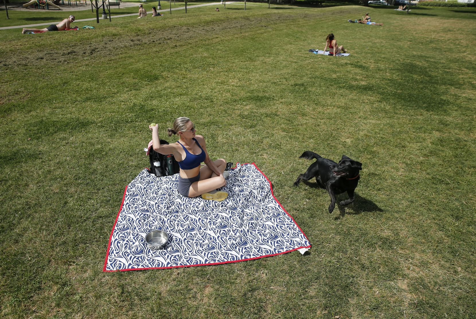 Amanda Calhoun of Dallas throws a tennis ball to her black lab KC at Cole Park on Friday.