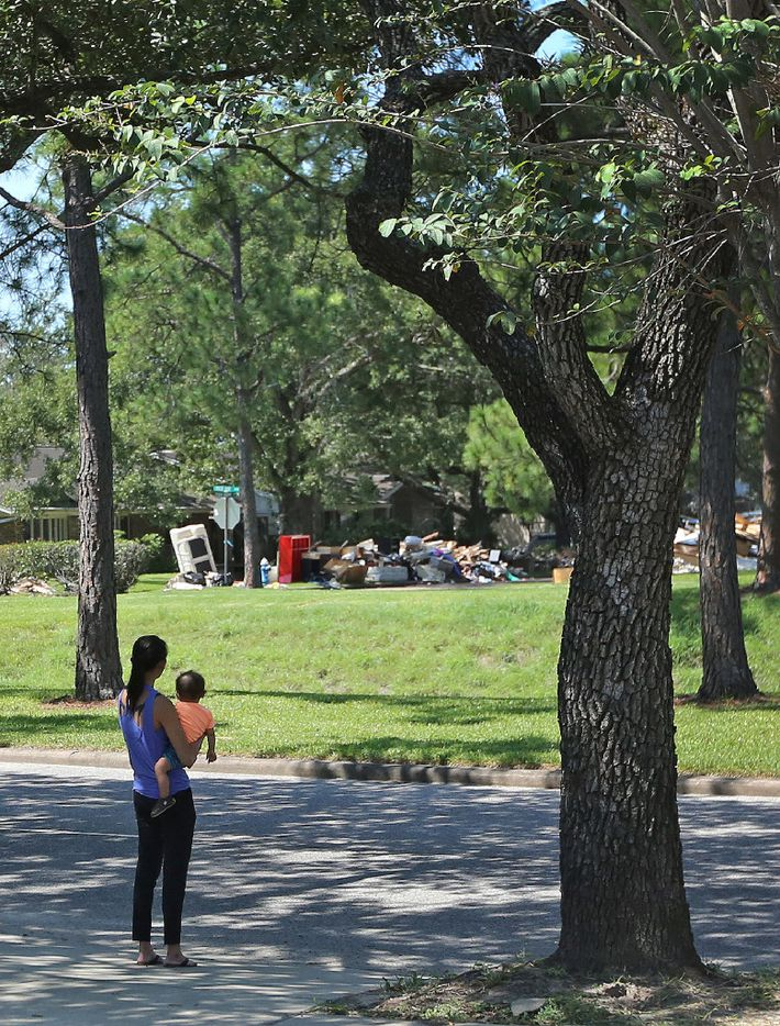 Catherine Pham and her 13-month-old son, Aidan, stand in their driveway and survey the scene as cleanup continues on the street where they live in the Meyerland section of Houston.