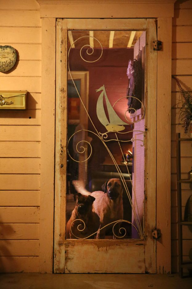 Dawn Humphrey's dogs look out from the front door window at her home in Waco.