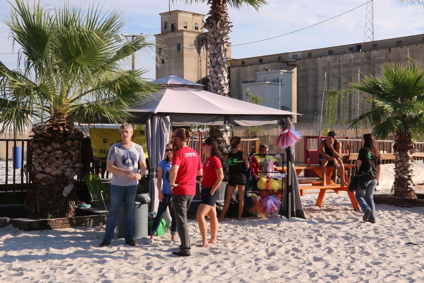 Models 4 Mutts Sand Volleyball tournament for Operation Kindness, which was held at Sandbar Cantina and Grill on September 19, 2015