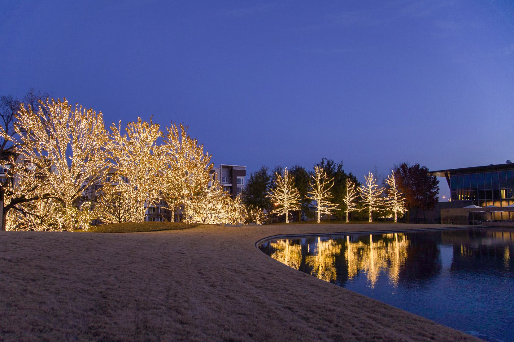 The Modern Art Museum of Fort Worth and its tree-dotted grounds will be illuminated for the season.