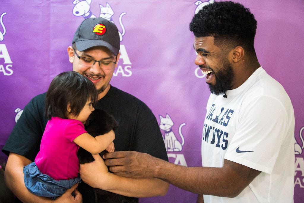 """Dallas Cowboys running back Ezekiel Elliott presents a puppy named Tico to Mia Ruiz after her family adopted the dog at the SPCA of Texas on Monday, Oct. 17, 2016, in Dallas. Elliott sponsored a $21 """"Run to the Shelter"""" pet adoption day on Monday. For each pet adoption, Elliott is covering the difference of the cost after the adopting family pays its $21. The event is part of the SPCA of Texas' 'Dogtober' promotion. 21 refers to Elliott's jersey number. (Smiley N. Pool/The Dallas Morning News)"""