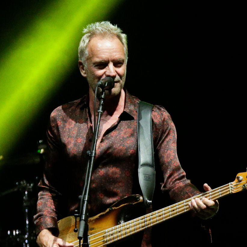 Sting performs during a concert.