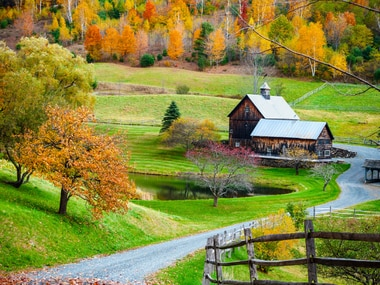 Probate homestead rights are tricky. They can easily be lost or forfeited.