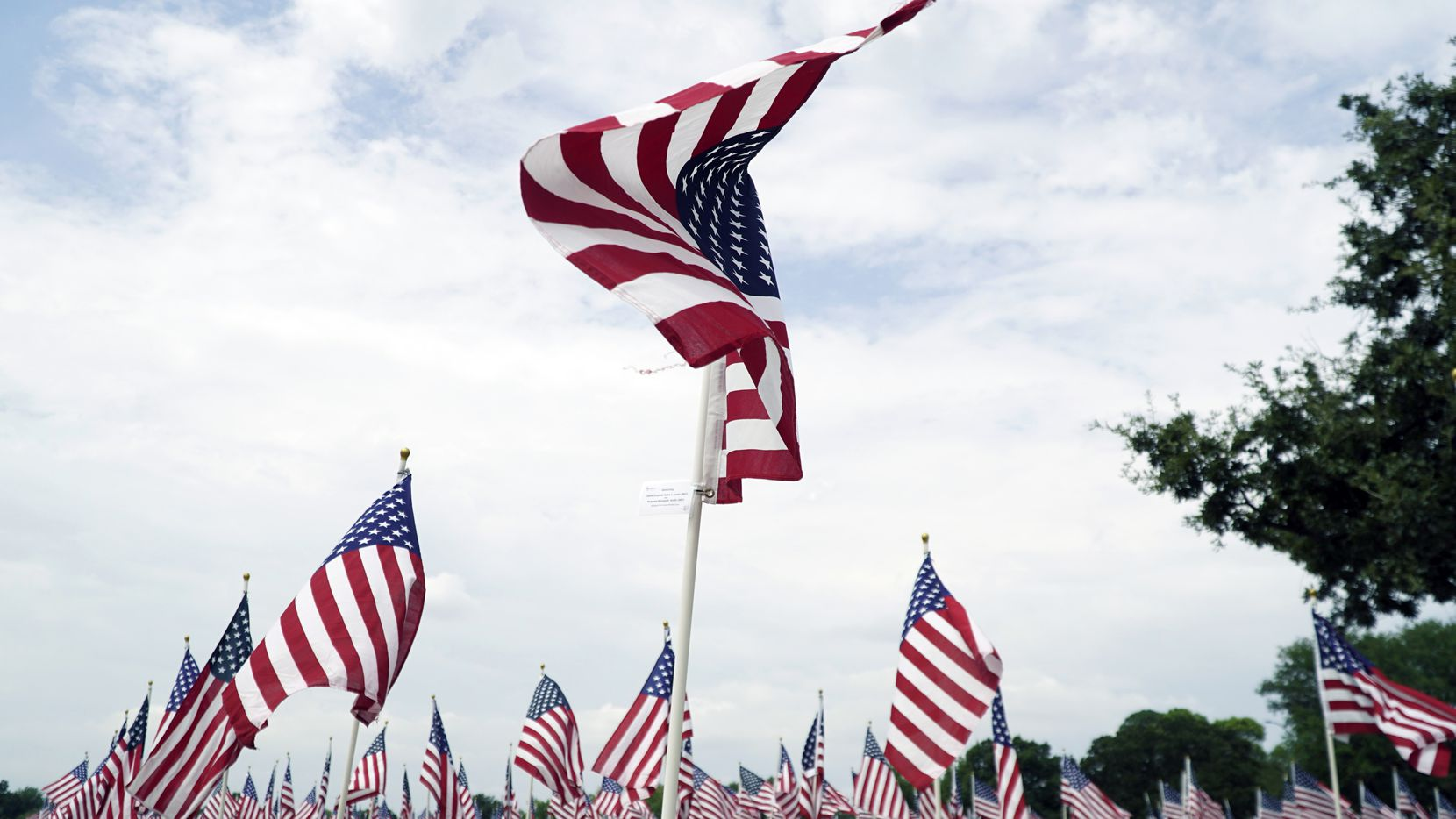At Veterans Park in Arlington, over 911 flags have been planted to create a Field of Honor that pays respects to the lives lost on Sept. 11, 2001. (Lawrence Jenkins/Special Contributor)