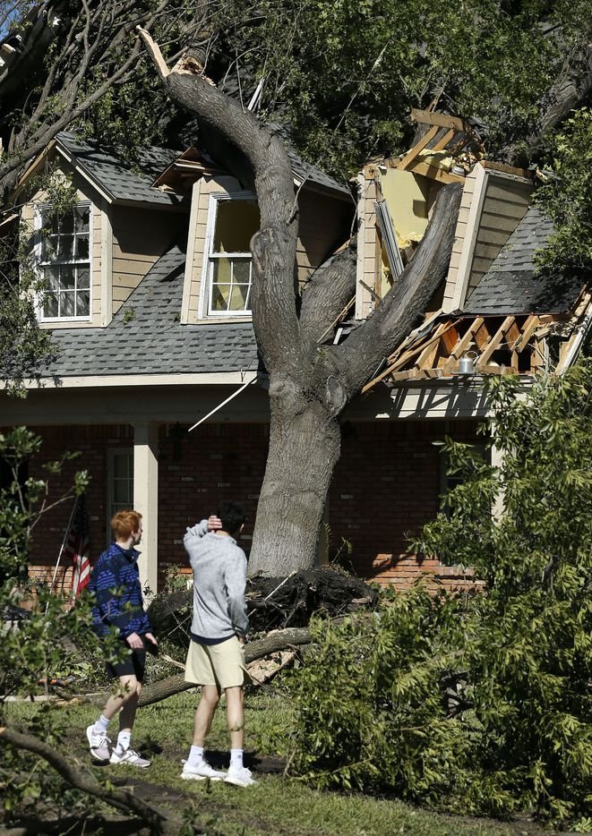 Liam Gault (left) and Ryan Hussain look back at a large tree that crushed a home on Pemberton Drive in Dallas, Monday, October 21, 2019. A tornado tore through the neighborhood knocking down trees and ripping roofs from homes.