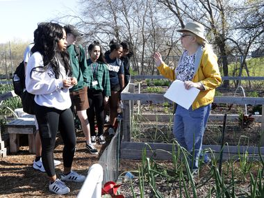 Volunteer Rebecca Brady leads a group of students on a tour of the community gardens at the Plano Environmental Education Center.
