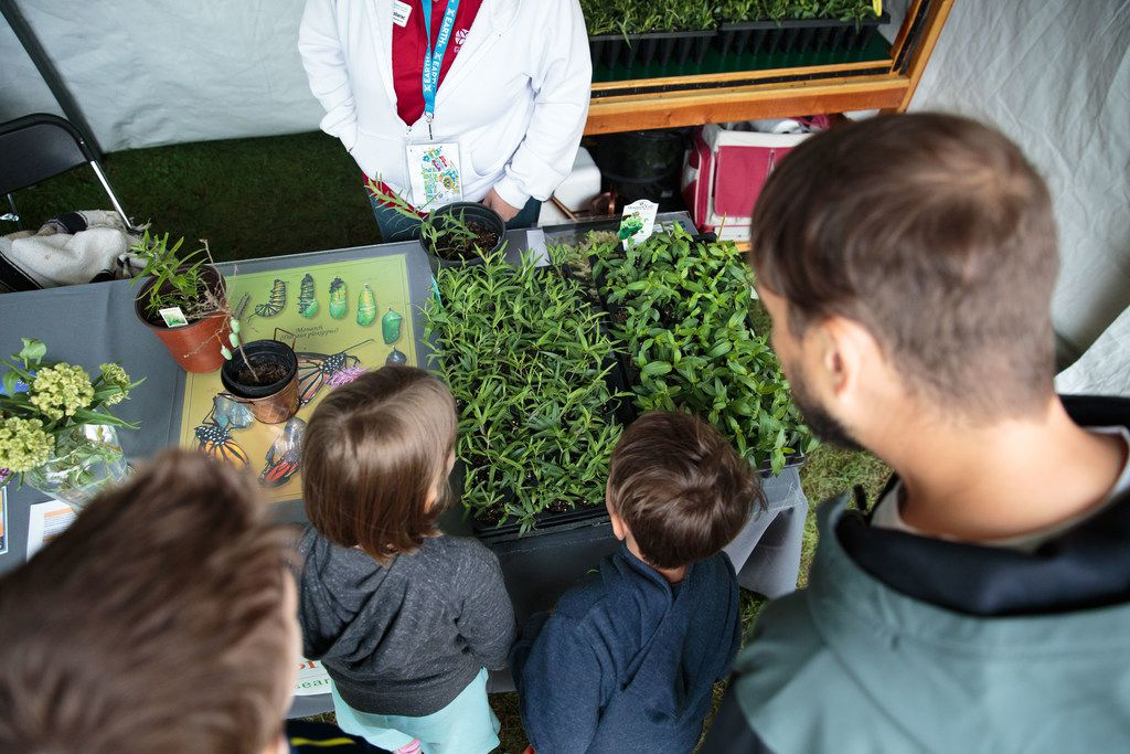 EarthX Expo fosters environmental education and family entertainment through a variety of exhibits, conferences and films. Displays and vendors devoted to solving garden challenges will capture the interest of garden enthusiasts. Earth Day Texas 2017, at Fair Park in Dallas, Texas.