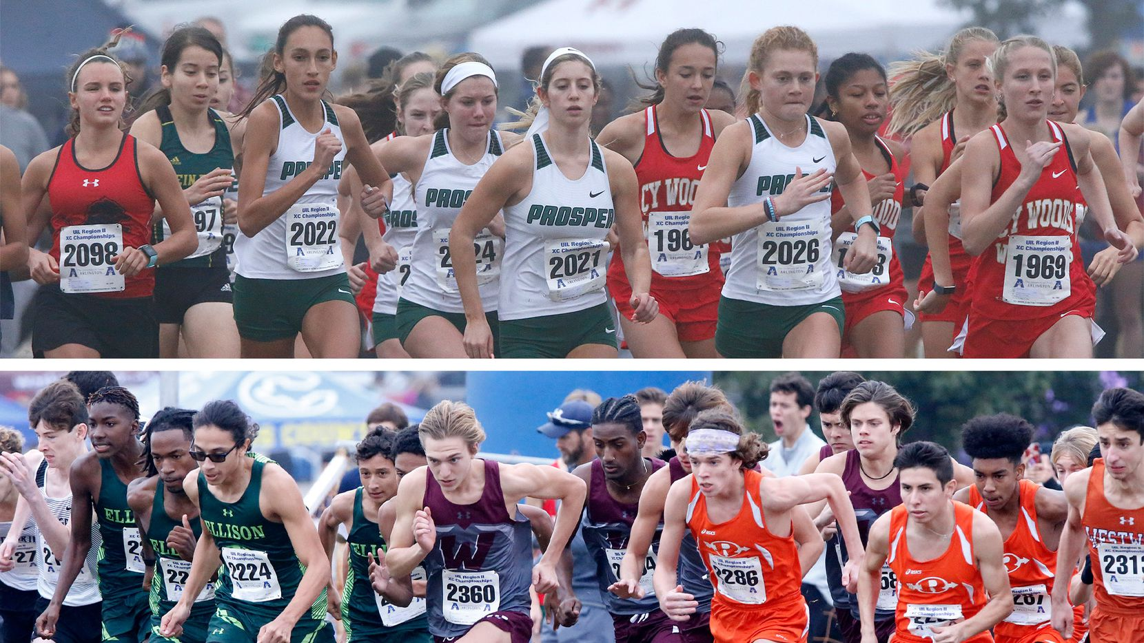 The 2019 girls 6A division at the Region II Cross County meet (top) and the 2019 boys 6A division at the Region II Cross County meet (bottom).