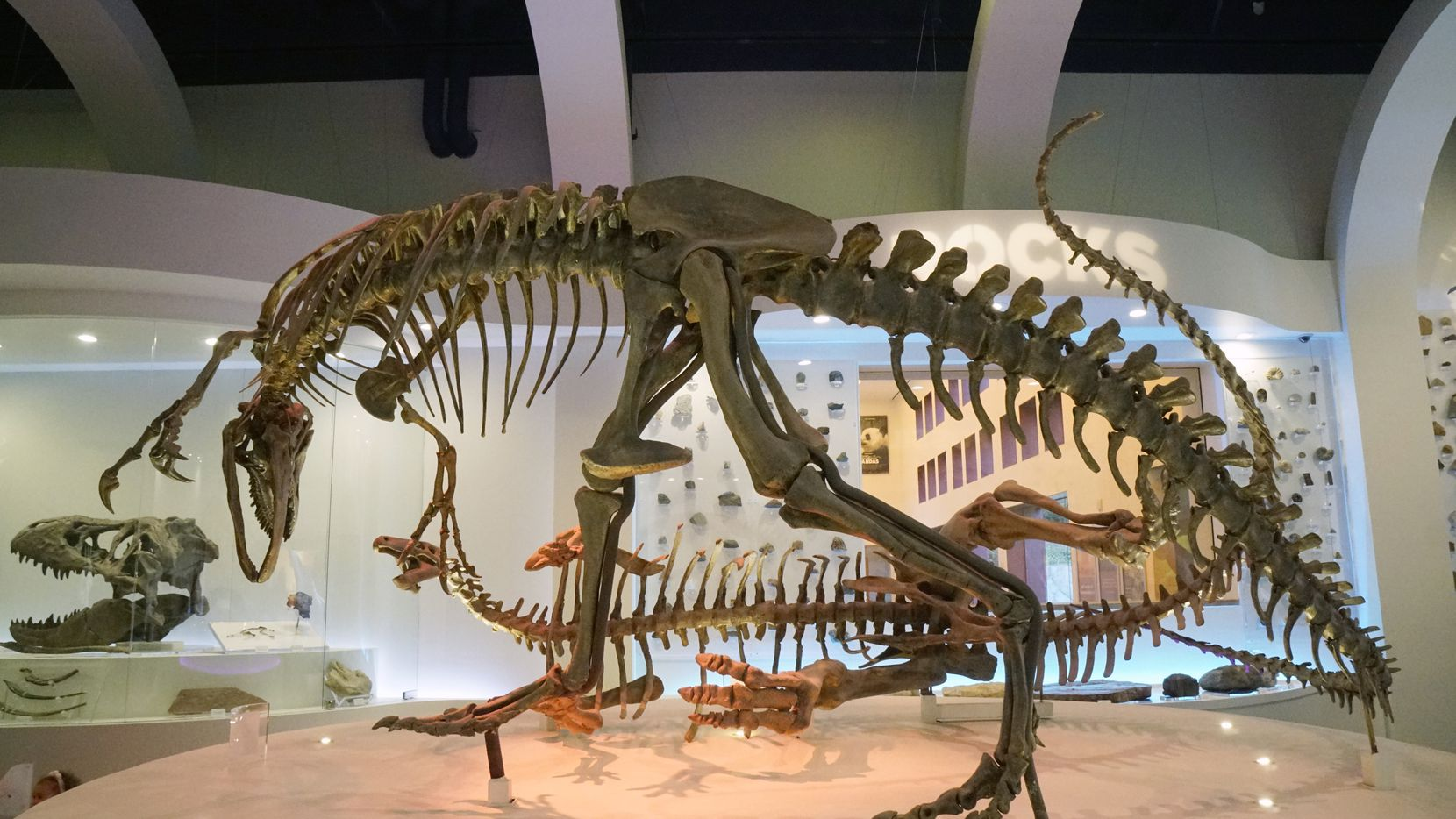 El Fort Worth Museum of Science and History se inauguró en 1941.