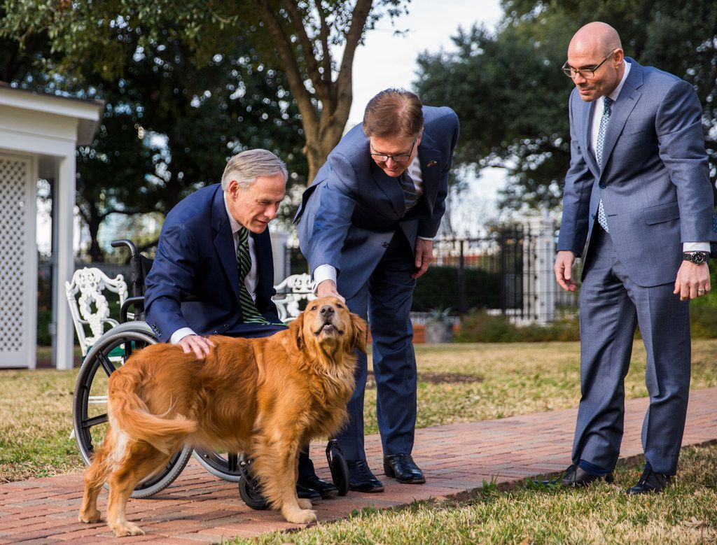 One of Gov. Greg Abbott's two golden retrievers, Pancake, hammed it up for a news conference at the Governor's Mansion in Austin on the second day of this year's legislative session. Abbott (left) and Lt. Gov. Dan Patrick petted Pancake while newly installed Speaker Dennis Bonnen watched.