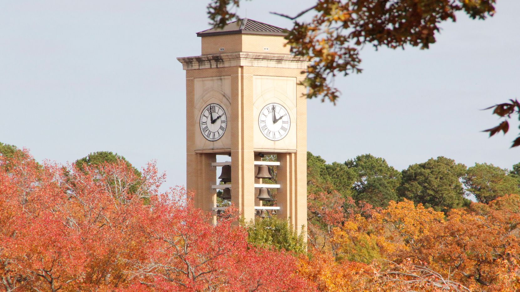 The University of Texas at Tyler currently has 306 international students.