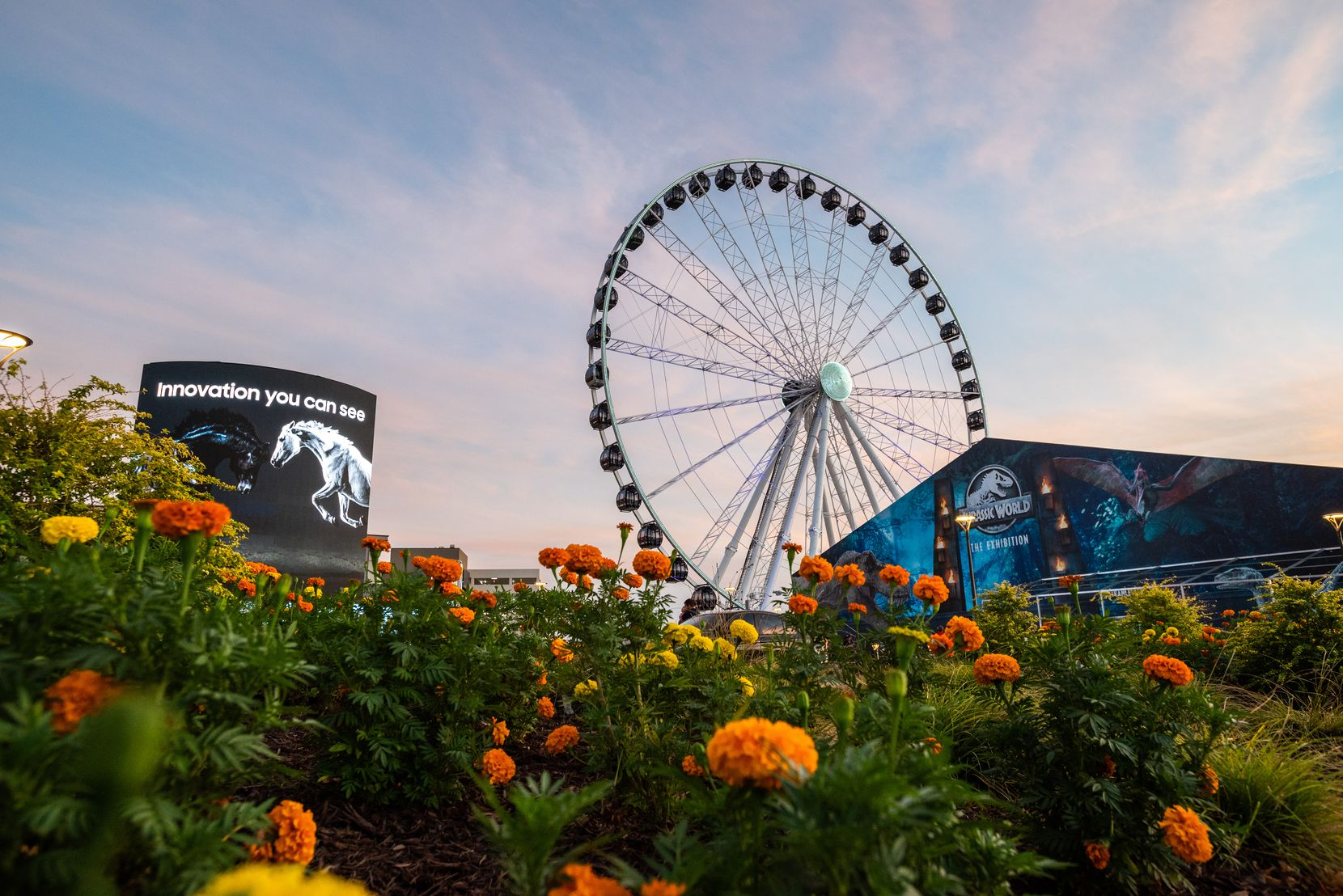 The Grandscape Wheel has 42 gondolas, and eight people can fit in each one. Visitors pay $15.94 for a ride.
