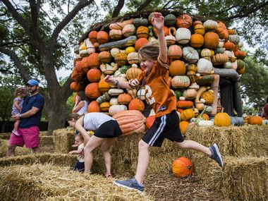 Kids can play among the pumpkins and stacks of hay during Autumn at the Arboretum. The festival will be open through Oct. 31.