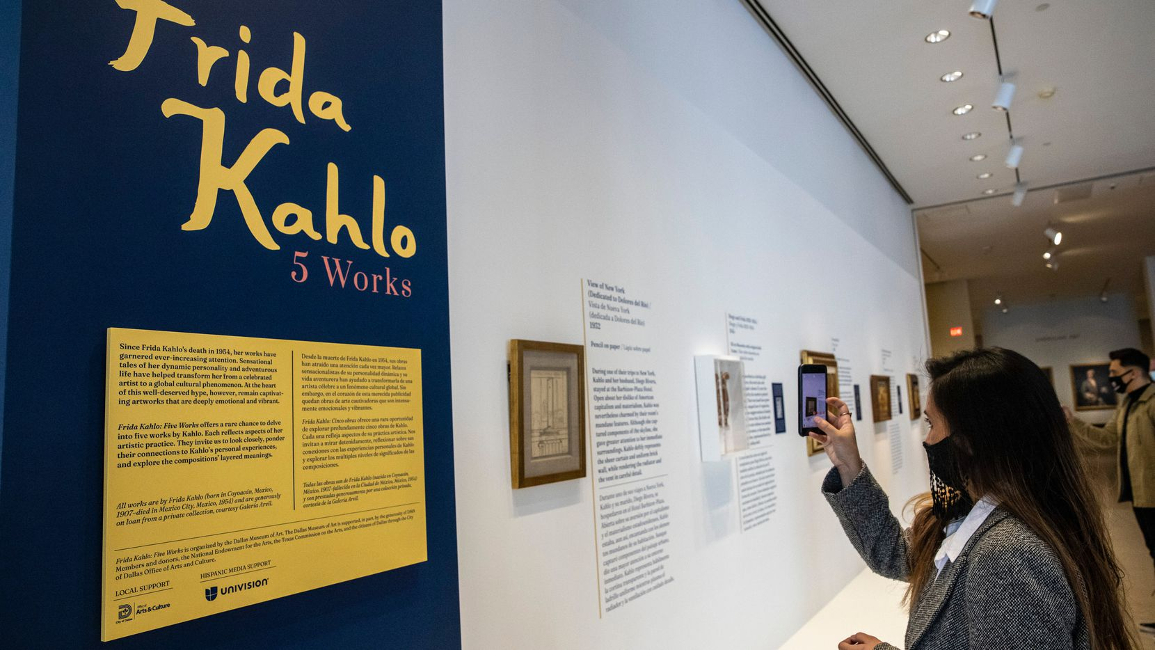 Una exposición con cinco trabajos de la artista mexicana Frida Kahlo se exhiben desde este fin de semana en el DMA.