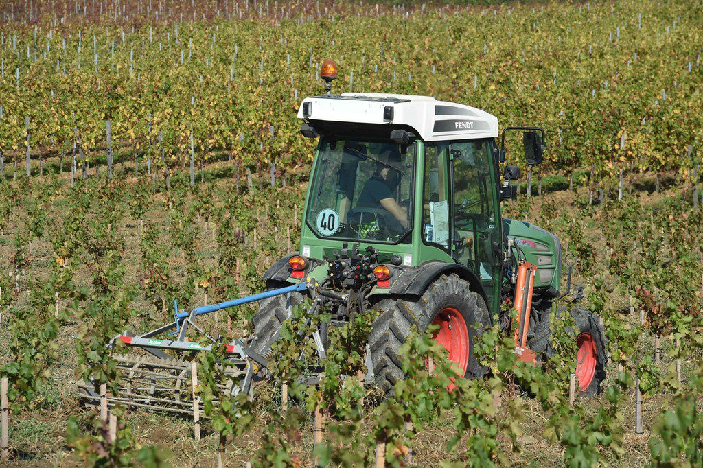 A worker drives a tractor fitted with a weeding machine through the vines of the Chateau La Brande in Belves-de-Castillon, southwestern France.