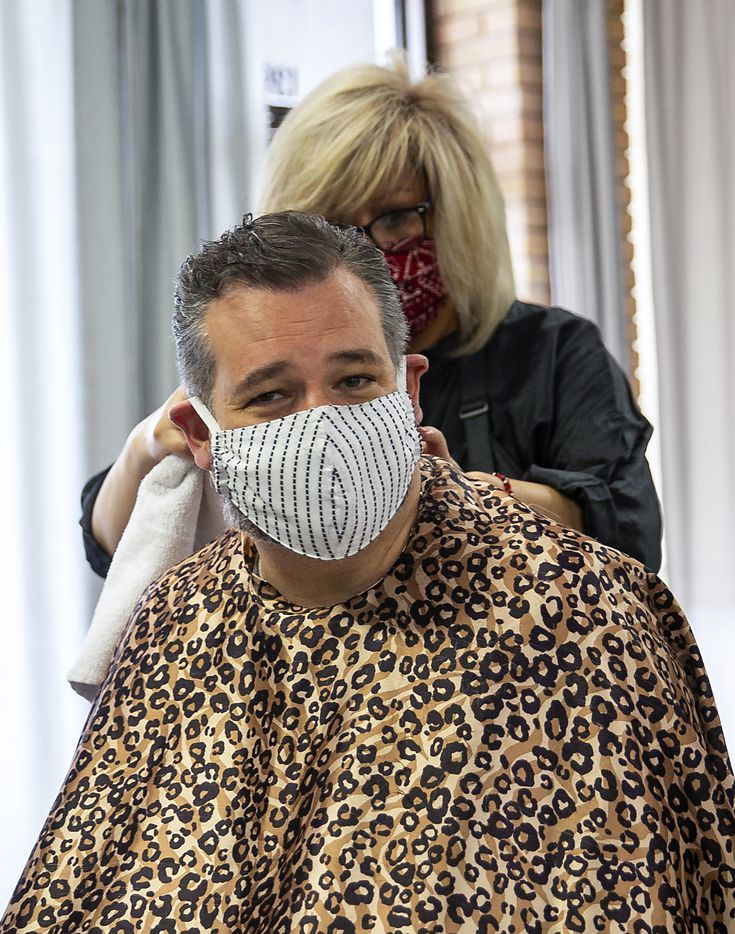 U.S. Sen. Ted Cruz, gets a haircut by a stylist at Salon À la Mode on May 8, 2020 in Dallas. The Texas Supreme Court ordered salon owner Shelley Luther to be freed from Dallas County Jail Thursday. (Juan Figueroa/ The Dallas Morning News)