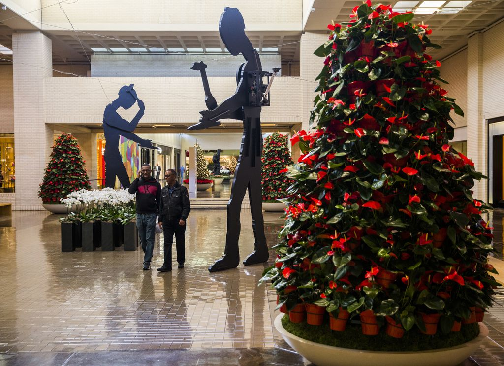 Trees made of red blooming Anthurium plants are a new Christmas decoration this year at NorthPark Center.