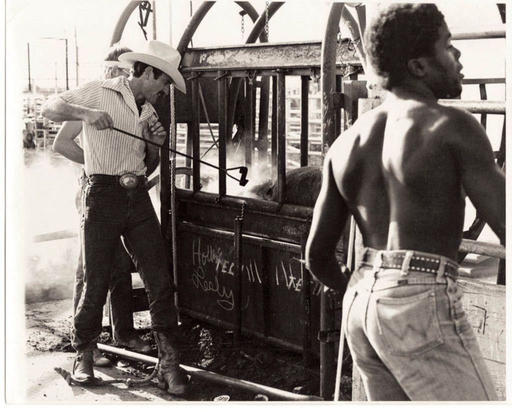 A livestock auction in Clovis, N.M., circa 1978, about the time Sarah Bird first heard the story of a woman who had enlisted in the Buffalo Soldiers.