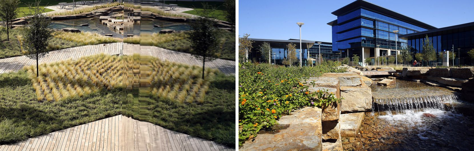 Drought-resistant landscaping and an artificial creek are reflected in the glass exterior of the Commons building (left). Lantana grows along the creek fed by harvested rainwater.