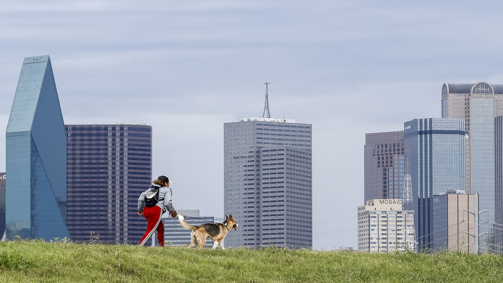 A woman runs with her dog along the Trinity Levee Trail in Dallas on Aug. 18.