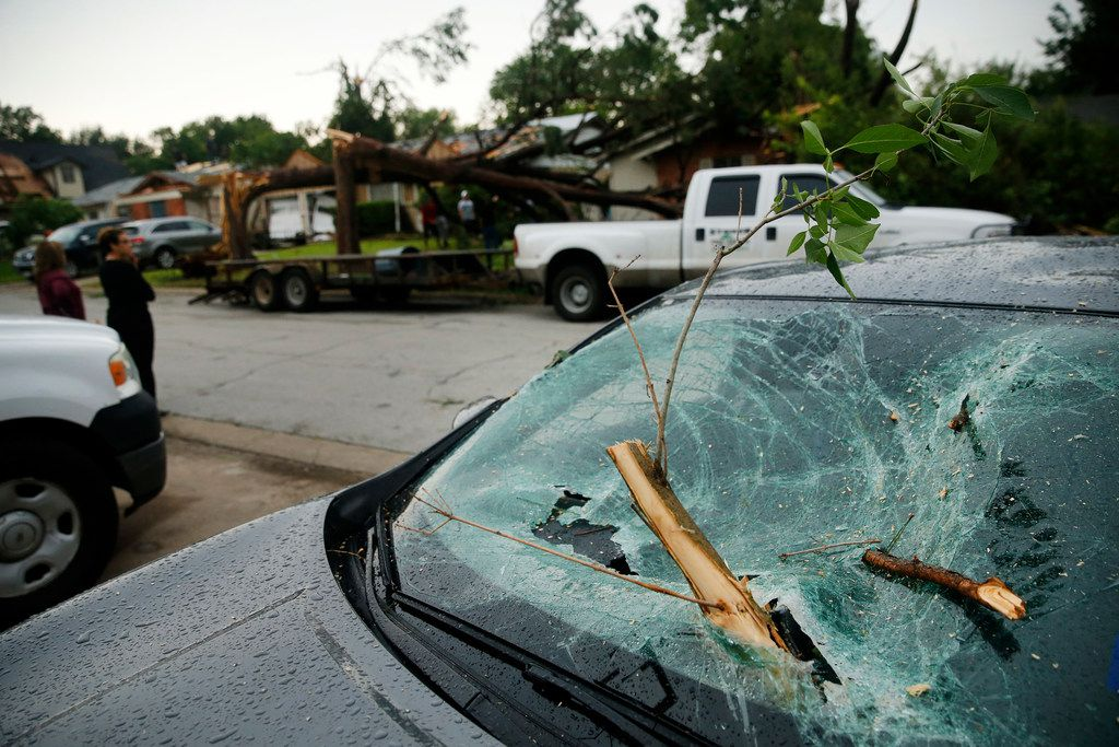 Limbs from a pine tree were impaled in the windshield of a resident on Andrews St. in North Arlington, Sunday, June 16, 2019 after high winds from a thunderstorm rolled through the  Metroplex. The pine tree had to be cut off the car.