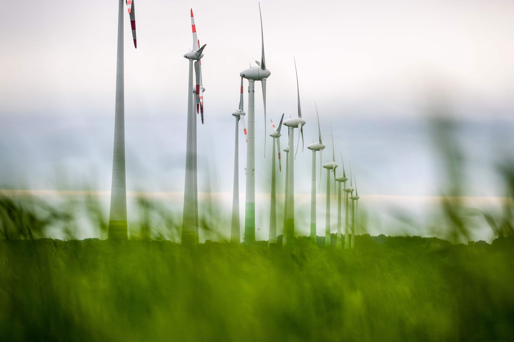 Many countries and organizations aim to reduce carbon emissions to zero by 2050. Above, windmills line in a field outside the village of Klein Buenzow, in northeastern Germany.