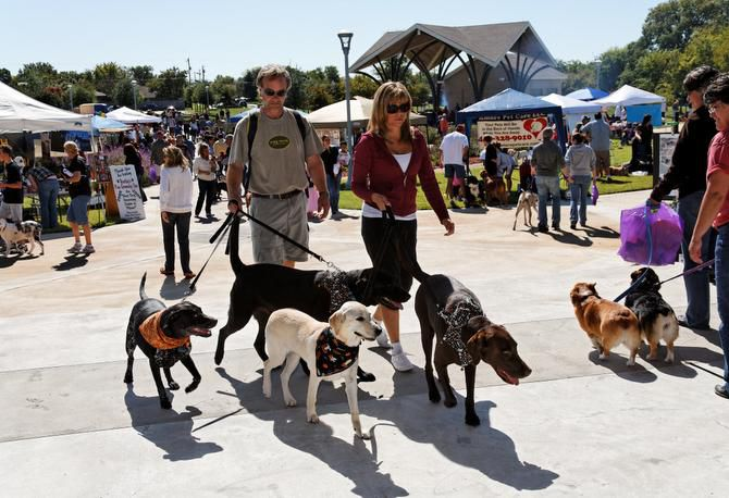 In a recent study, LawnStarter ranked Frisco No. 68 in terms of dog-friendliness, the third-best of all Texas cities, just behind No. 61 Pasadena and No. 66 Lubbock
