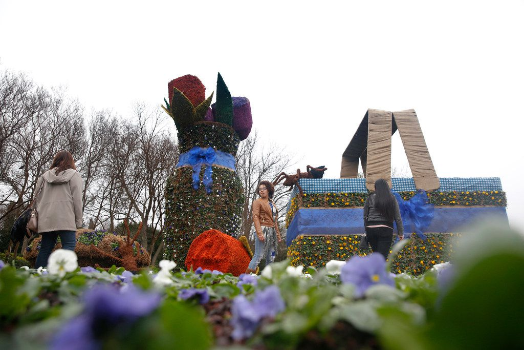 "Students from The University of Texas at El Paso (from left) Bianca Perusquia, Thalia Anderson and Diana Hernandez walk through the picnic-themed topiaries at the Dallas Arboretum in Dallas on Friday, Feb. 22, 2019. The annual Dallas Blooms festival, themed ""Life's A Picnic,"" runs Feb. 23 through April 7 and will include more than 100 varieties of spring-blooming bulbs and 500,000 tulips."