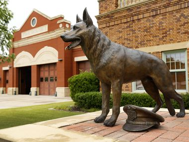 A bronze sculpture of a K-9 German Shepard is pictured outside the Southlake Department of Public Safety building in Southlake, Texas Tuesday, June 23, 2020.
