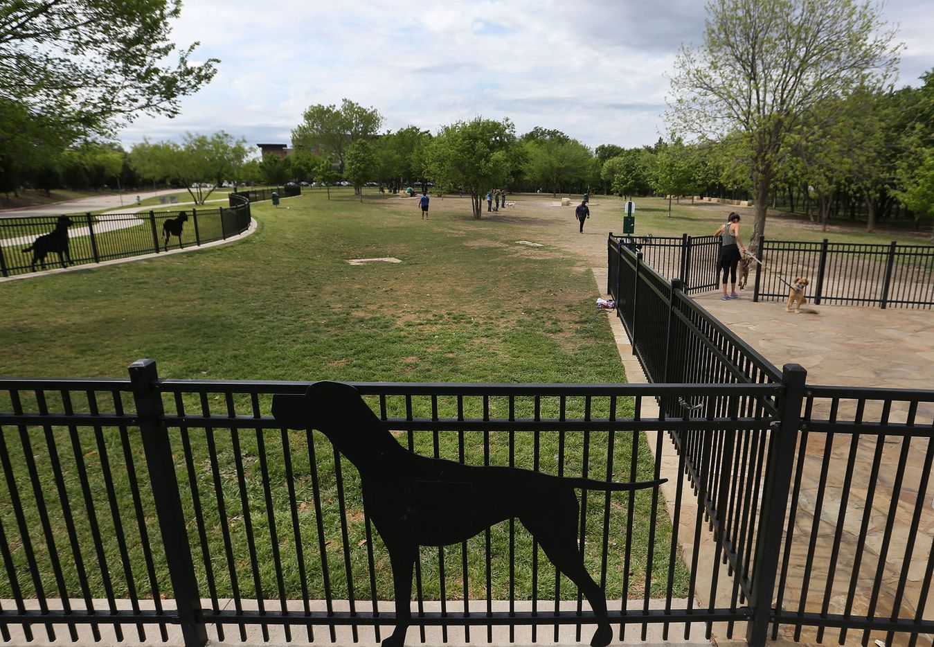 A mild afternoon is the perfect setting for an outing at NorthBark Dog Park, located near the intersection of the Dallas North Tollway and the Bush Toll Road, photographed on Saturday, April 1, 2017.