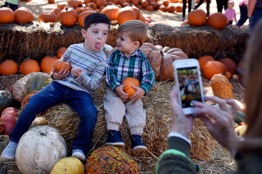 Wyatt Killion, 4, makes a silly face as his grandmother photographs him and his 1-year-old brother, Ty, during their trip to the Pumpkin Village during Autumn at the Arboretum on Oct. 23, 2018.