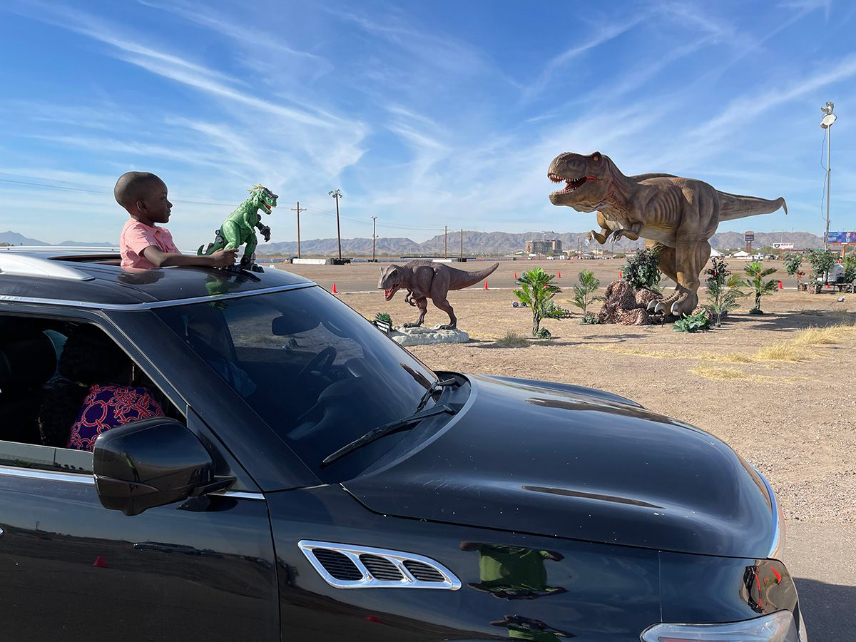 A child looks out the sunroof of the family car as they drive past animatronic dinosaurs in Phoenix. There are 60 total dinosaurs on display at the exhibit, which is now in full swing in Arlington.