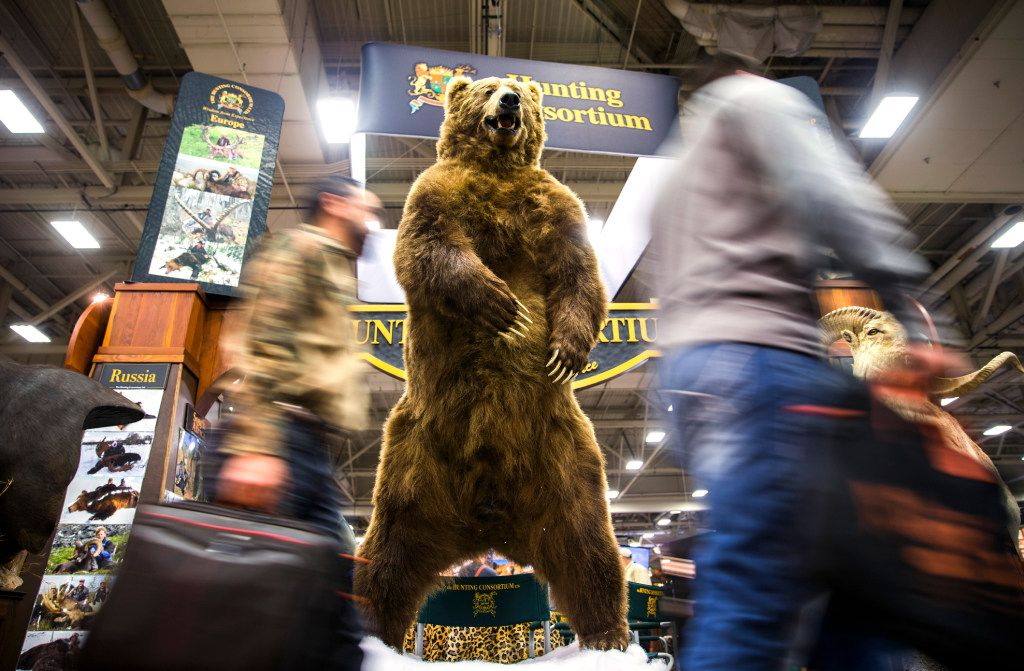People pass a taxidermied grizzly bear at the Adventure Convention Sporting Expo on Thursday, January 5, 2017 at the Kay Bailey Hutchison Convention Center in downtown Dallas. (Ashley Landis/The Dallas Morning News)