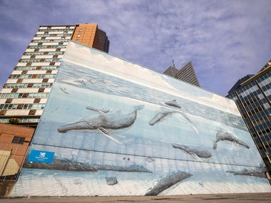 """After recent advertising posters came down, a mural painted in 1999 by the artist and conservationist Wyland is visible on Tuesday, April 21, 2020 in downtown Dallas. The mural is part of a series of more than 100 he did around the world called """"Whaling Walls."""""""