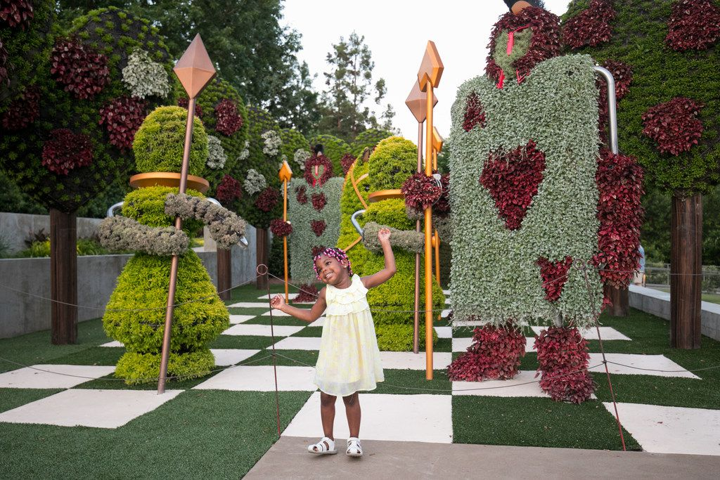 "While not technically in Buckhead, the Atlanta Botanical Garden is close enough to warrant a visit -- especially if you can go before Oct. 27 and catch the spectacular ""Imaginary Worlds: Alice's Wonderland"" exhibition."