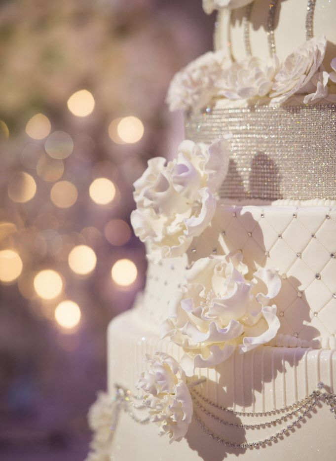 When 77-year-old grandmother Evelyn Rector found herself in the hospital with diverticulitis, her grandson couldn't bear the thought of having a wedding ceremony without her there.