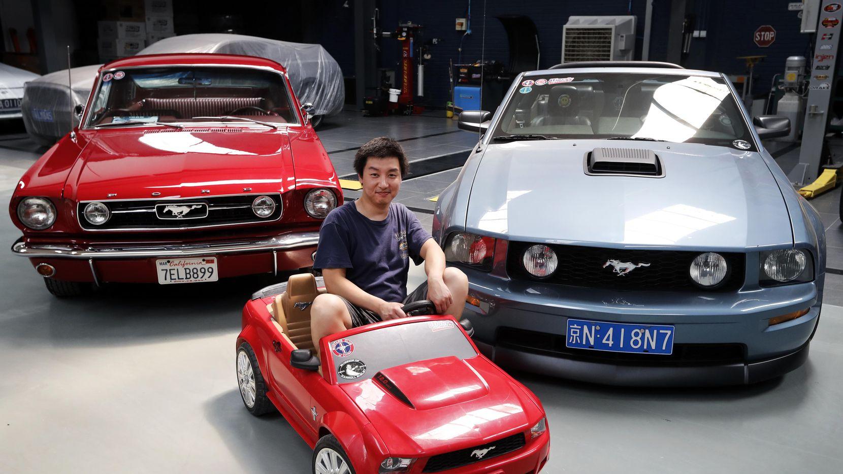 Guo Xin presenta su coleción de autos Mustang de Ford Motors Co., incluído una versión en miniatura. en su casa en Beijing.(AP)